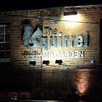 The Squirrel Pub