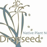 Dropseed Native Plant Nursery