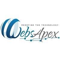 WebsApex - E-commerce Web Design and Web Development Company in Delhi India