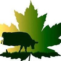 Smith Maple Crest Farm LLC