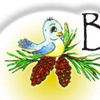 Bluebird Candle Co.