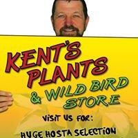 Kent's Plants & Wild Bird Store