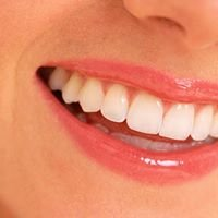 Great Lakes Family Dental Group-Saginaw