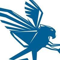 Eagle Web Assets Inc.