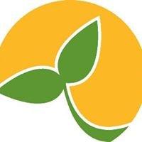 Divine Harvest Organic Spreads With Chia / Tartinades bio avec chia