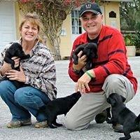 Florida Dog Trainer