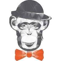 The Monkey Bar