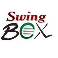 Swingbox (tm)  world's best golf net