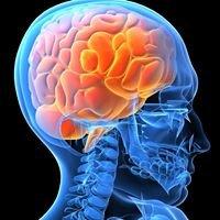 South Puget Sound Neurology & Integrative Health Center