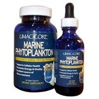 UMAC-Core Marine Phytoplankton