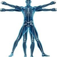 Structure and Function Therapeutic Massage