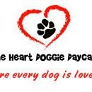 From the Heart Doggie Daycare