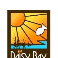 Daisy Bay Resort - Lake Vermilion