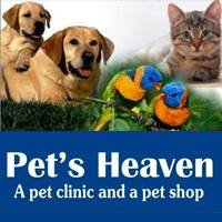 Pet's Heaven - A Pet Clinic Near Amanora Magarpatta Hadapsar