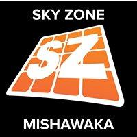 Sky Zone Mishawaka