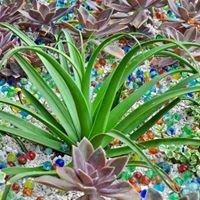 Xylem Organic Gardening, LLC