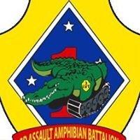 Delta Company 3rd Assault Amphibian Battalion