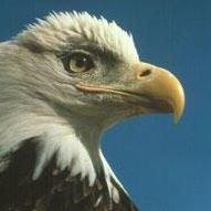 Eagle Nature Foundation