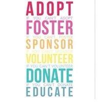 Alabama Foster & Adoptive Parent Association