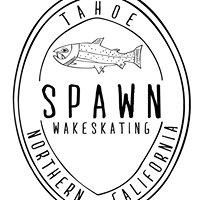 Spawn Wakeskating