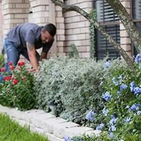 Perkins Landscaping and Lawn Care