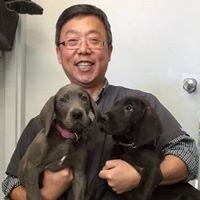 Calgary Holistic Veterinary Clinic