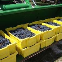 Waterman Winery & Vineyards, Inc.