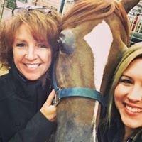 LakeShore Equine Services, Andrea McGowan, DVM