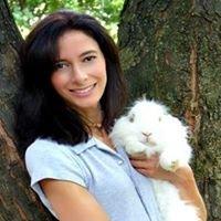 Natural Healing Pet Care