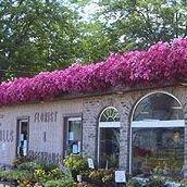 Falls Florist & Greenhouse