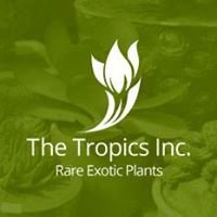 The Tropics Inc.