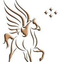 Pegasus Intellectual Capital Solutions LLC