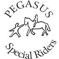 Pegasus Special Riders, Inc.
