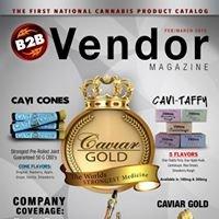 B2B Vendor Magazine