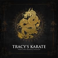 Tracy's Karate St. Louis