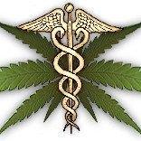 MEDICAL M A R I J U A N A ADVOCATES
