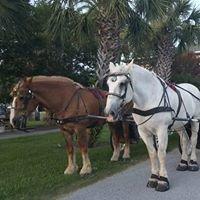 Amelia Island Carriages