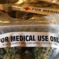 Decriminalize Marijuana in Australia