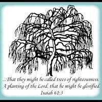 Perfect Joy Ministries