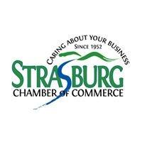 StrasburgVAChamber