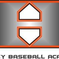 Harvey Baseball Academy