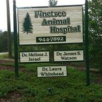 Pinetree Animal Hospital