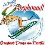 Greyhound Pets of America (GPA) Salt Lake