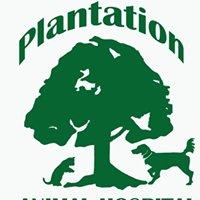 Plantation Animal Hospital, PA