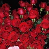 The Enchanted Florist- Orion, IL