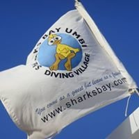 Sharks Bay Umbi Diving Village