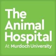 The Animal Hospital