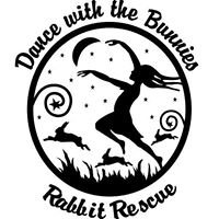 Dance with the Bunnies Rabbit Rescue