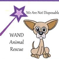 We Are Not Disposable