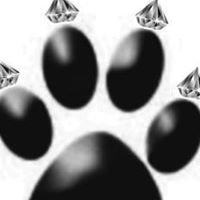 Four Diamond Paws